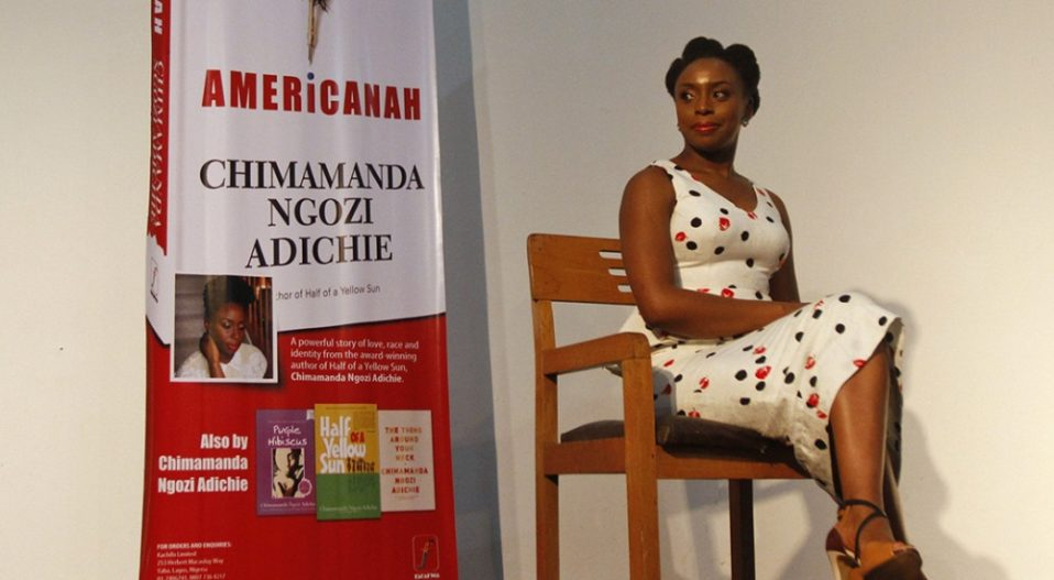 REVIEW: 'BOLD' AMERICANAH NARRATIVE ACCOUNTS FOR AFRICAN MIGRANTS' VILE MEANS OF SURVIVAL IN AMERICA