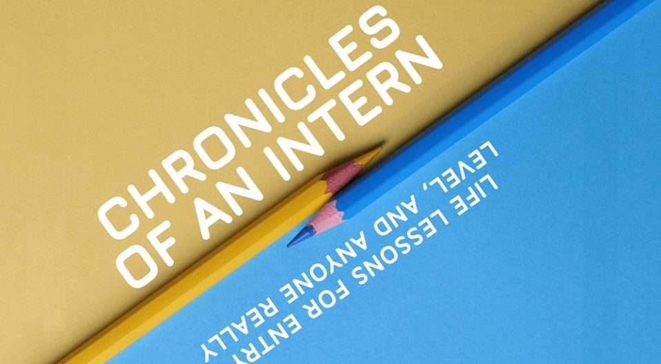 REVIEW: EMMANUEL FAITH LAYS BARE THE MYSTERIES OF THE CORPORATE WORLD IN CHRONICLES OF AN INTERN, 'A BIBLE FOR INTERNS'