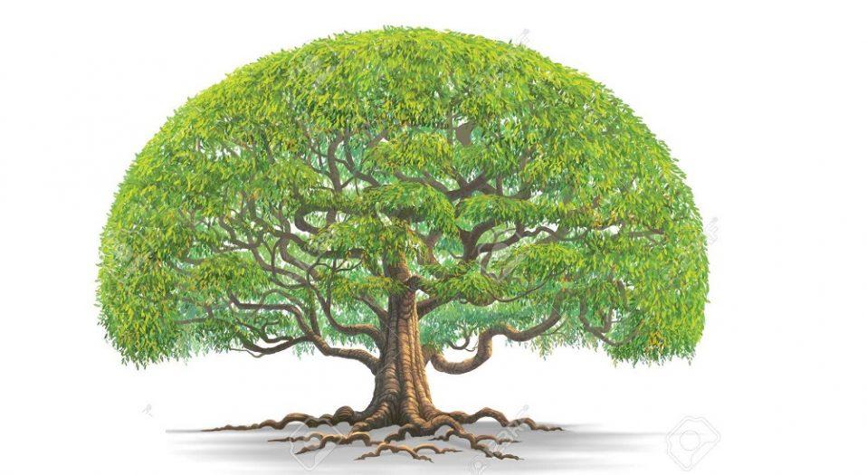 I AM A BIG TREE (a poem by El Sane Ken Silencer)