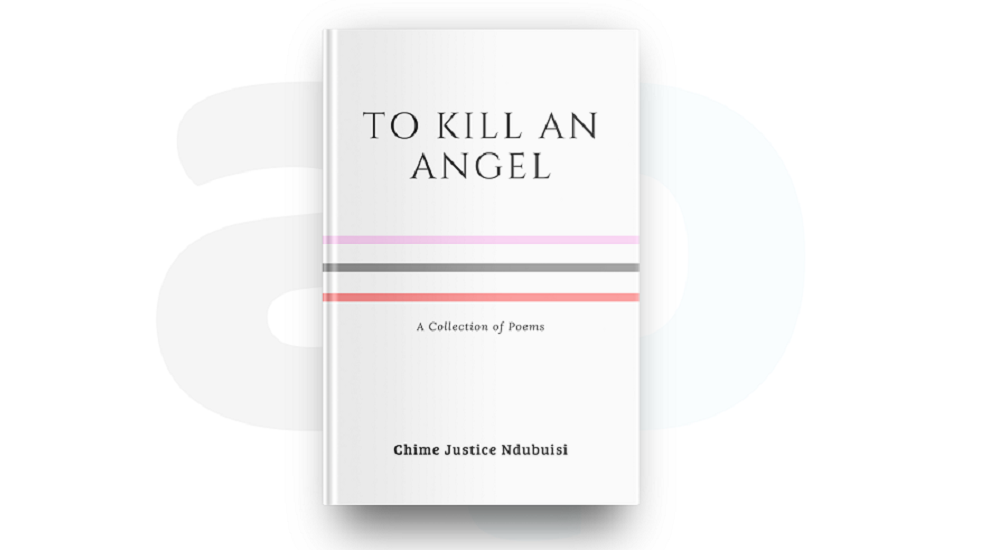 REVIEW: THE LANGUAGE AND METAPHORS IN NDUBUISI'S 'TO KILL AN ANGEL' ARE FRESH AND DOMESTICATED